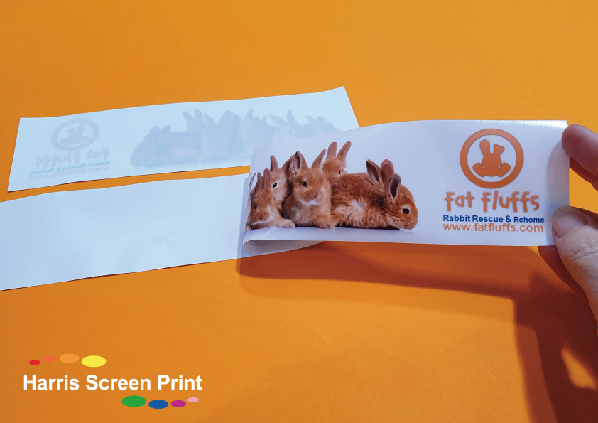 Car Stickers printed for Rabbit Rescue and Rehoming Charity